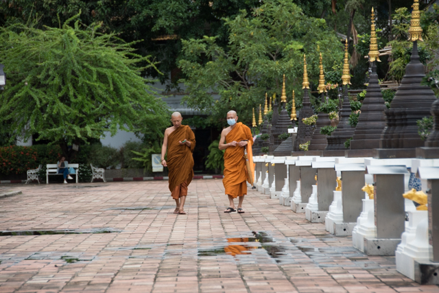monjes chiang mai - monk chat